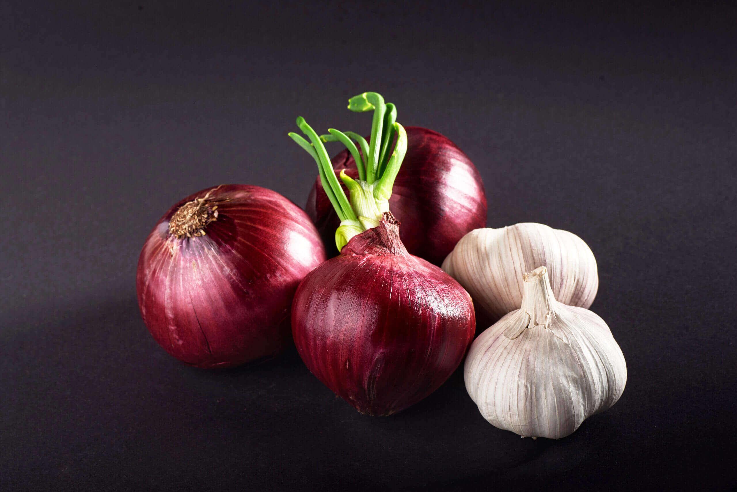 blue purple onion garlic isolated white black scaled