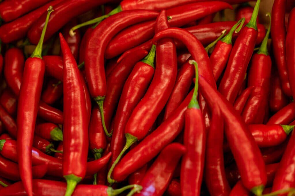 close up hot red chilean pepper